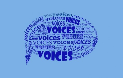 Voices – When looking at your schedule for this year, what was the thing you were most afraid of or concerned about?