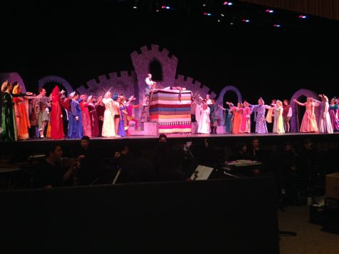 Once Upon A Mattress charms audience on opening night