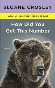 Book Review: How Did You Get This Number?