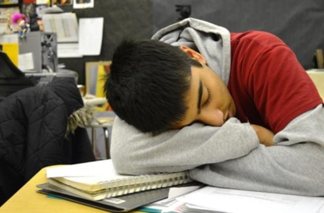 psychologist robin dunbar and sleep deprivation essay