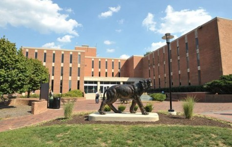College Review: Towson University