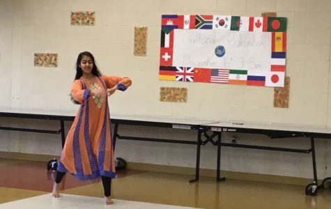Model UN hosts annual cultural celebration