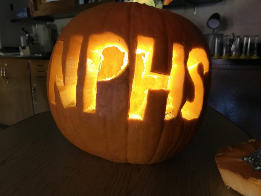 Marine and Botanical Society get in the spooky spirit at pumpkin carving party