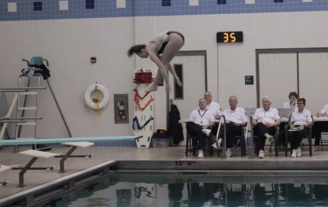 Big performances and little splashes for NP divers