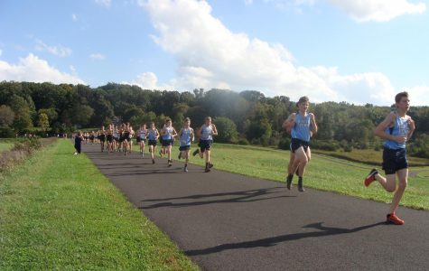 Knights run to 8-0 in XC