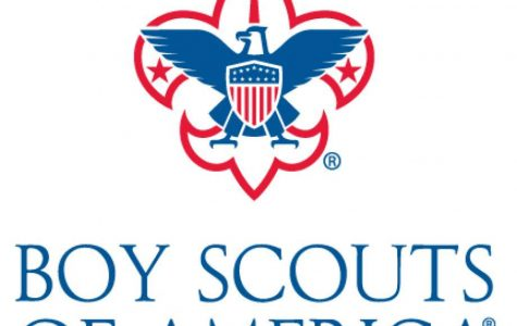 The path through scouting