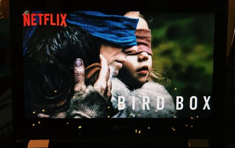 You won't want to watch Bird Box blindfolded