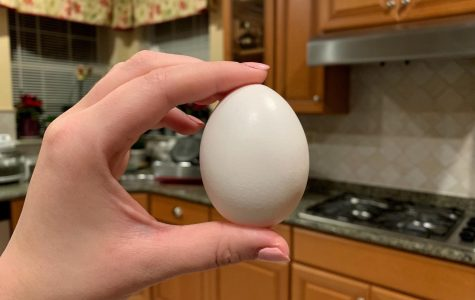 The insta-egg… here we go again