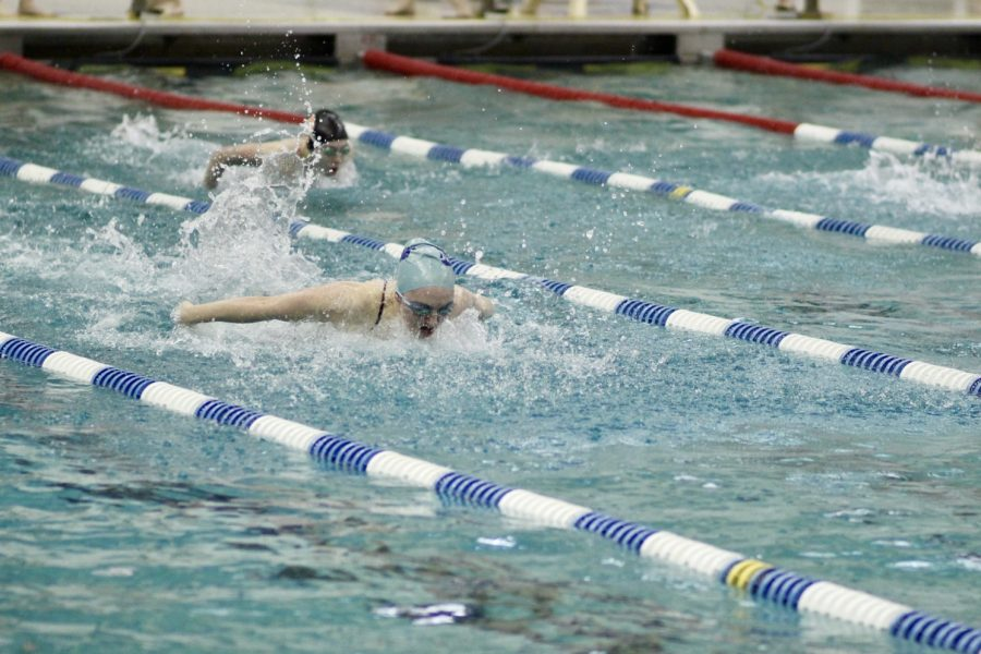 Muth swimming butterfly at this year's Senior Night.