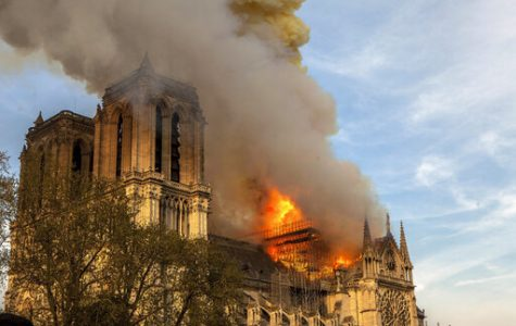 A brief reflection on Notre Dame