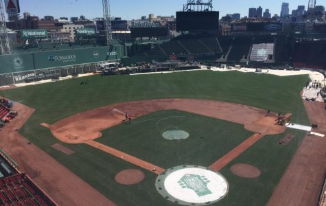 MLB Ballparks to visit this summer