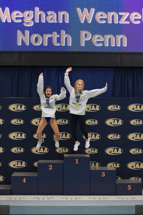 1&2 in the State: Meghan Wenzel (right) won first place in the state diving championship and Maddie Freece (left) was the runner up.