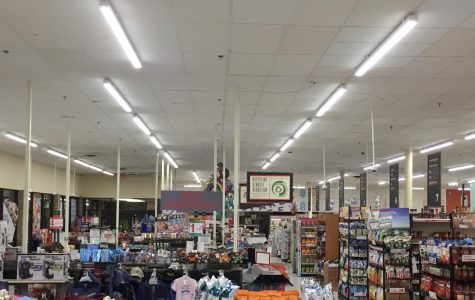 The scene at Weis, one of the few businesses allowed to stay open amidst Pennsylvania's social distancing lockdown.