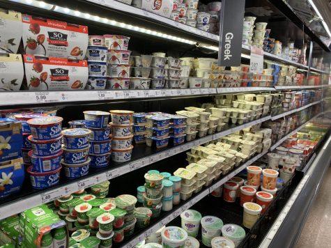 Yogurt—a dairy fanatic