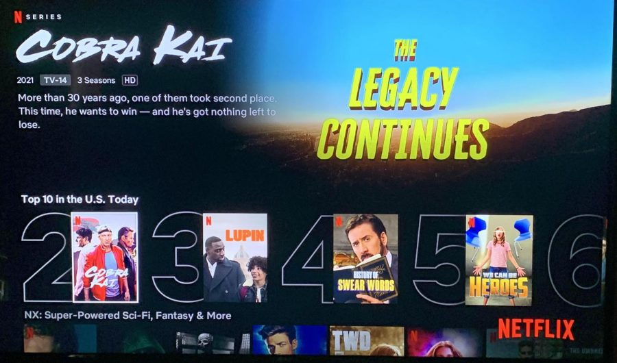 Cobra Kai appeals to many audiences - those who grew up with the original Karate Kid, and those who relate to the new generation of stars in the series.
