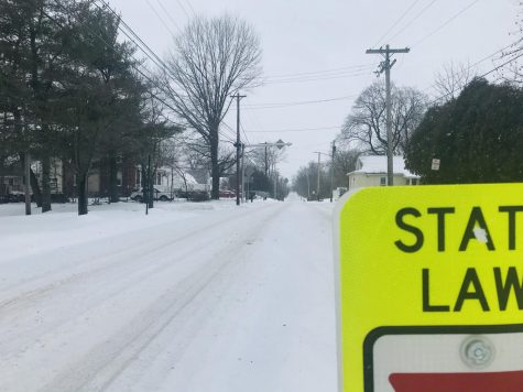 A desolate Whites Road...the sign of a true snow day.