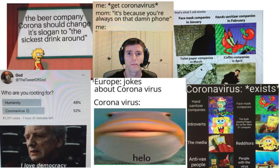 Coronavirus memes from the past year.